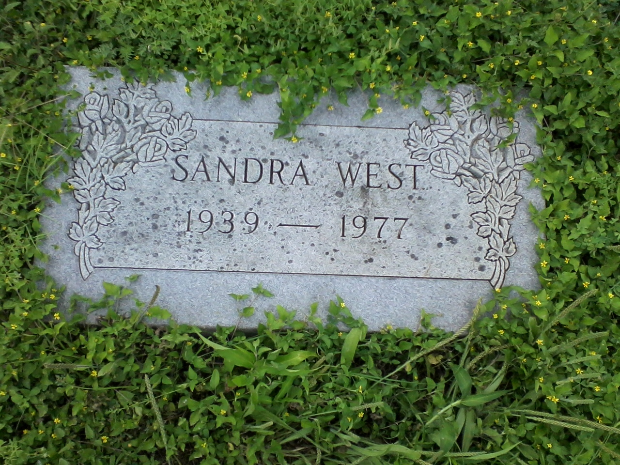 sandra-ilene-west-5